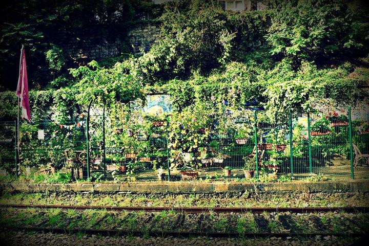 IMAGE: photos_les_jardins_du_ruisseau_-2_-_laietitia_saudry