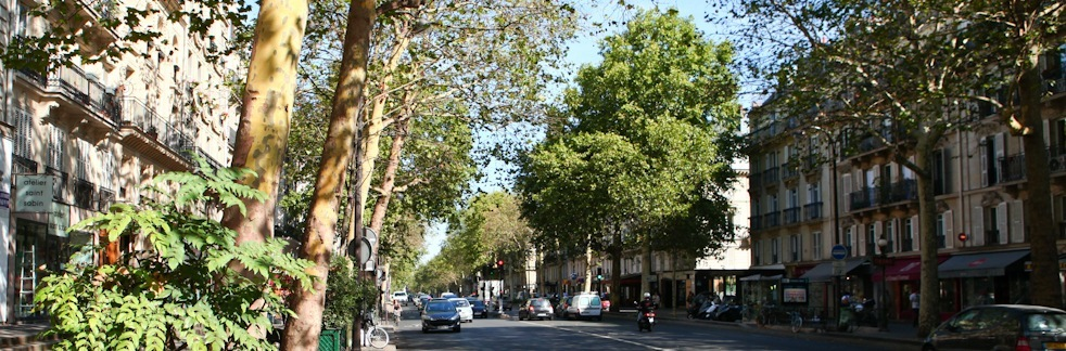 IMAGE: Typical Parisian street to illustrate the costs of buying an apartment