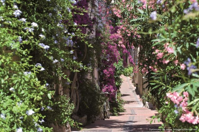 IMAGE: View looking down small flower-covered street in Antibes (Photo © F. Trotobas)