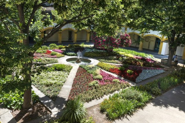 IMAGE: Beautiful garden of the Espace Van Gogh - a must for art-lovers